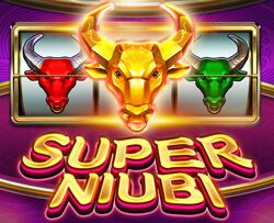 Super Niubi
